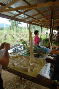 market of native medicinal plants